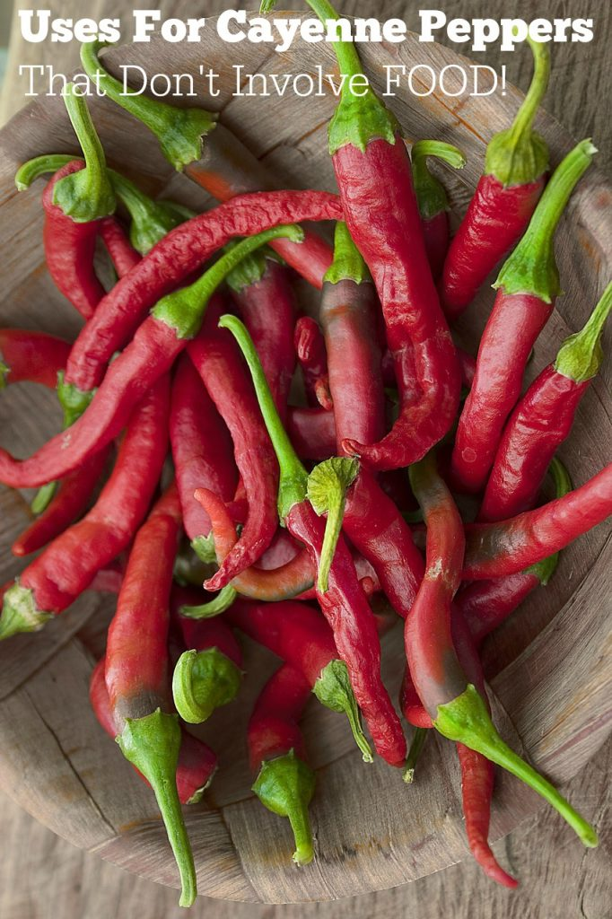Uses for Cayenne Pepper that don't involve food!