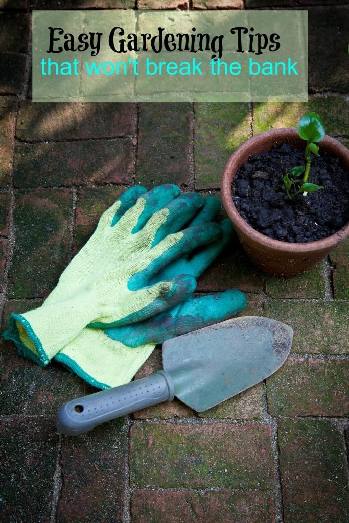 Easy Gardening Tips
