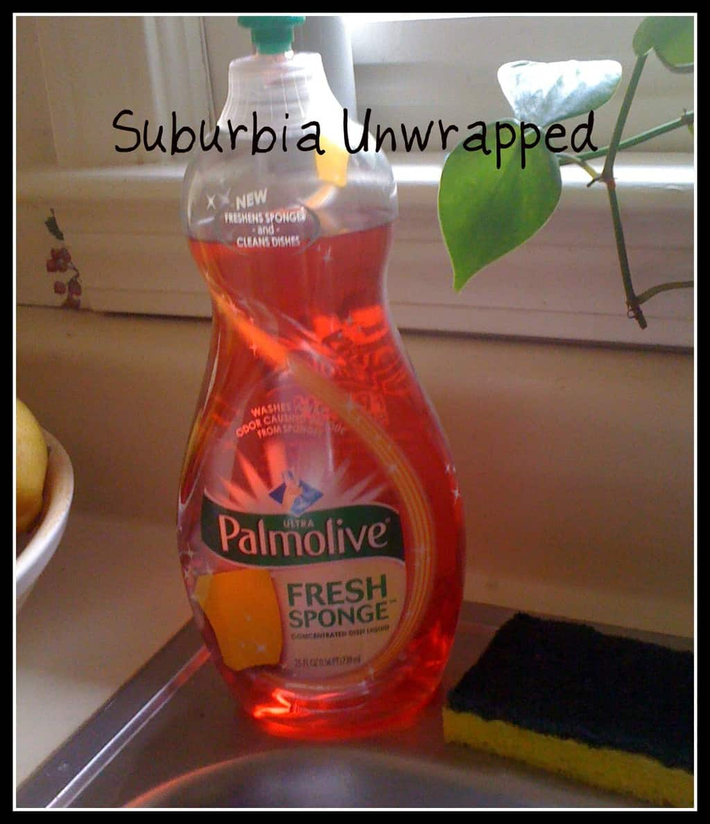Palmolive Fresh Sponge:  A Solution for Stinky Sponge Syndrome!
