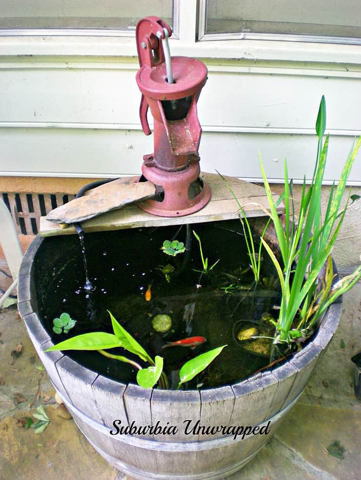 5 Reasons You Need Water Features for the Garden
