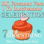 The 1 year Blogiversary Giveaway for 7 on a Shoestring!