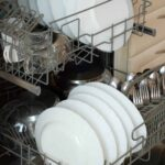 How to Clean Your Dishwasher:  The Grimy Reality!