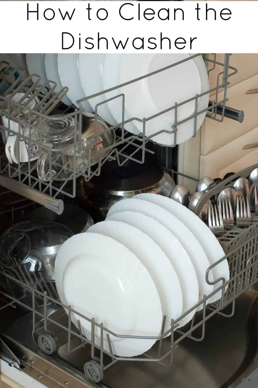 How To Clean A Dishwasher How To Clean Your Dishwasher The Grimy Reality