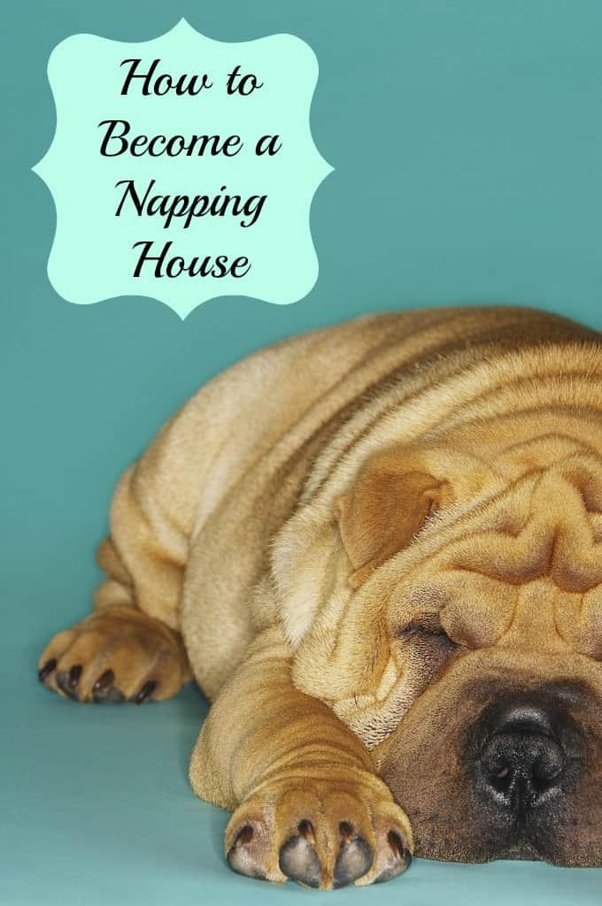 napping house tips