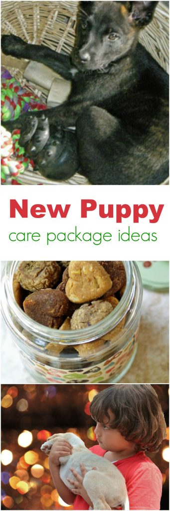 New Puppy Care Package Ideas