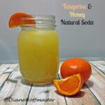 Tangerine and Honey Natural Soda Recipe