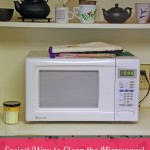 Easiest Way to Clean the Microwave!