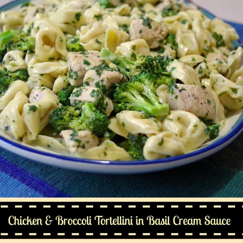 Chicken and Broccoli Tortellini in Basil Cream Sauce