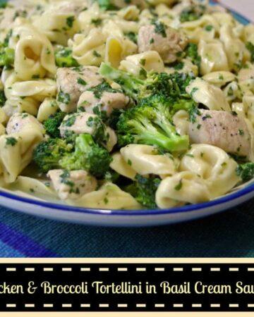 Chicken and Broccoli Tortellini in Basil Cream Sauce