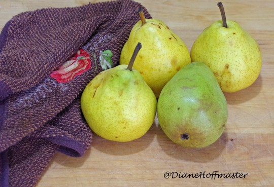 over ripe pears