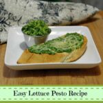 Easy Lettuce Pesto Recipe