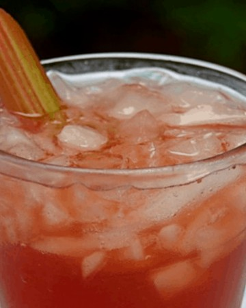 Fresh Strawberry Rhubarb Cocktail Recipe in a glass with a stalk of rhubarb in it