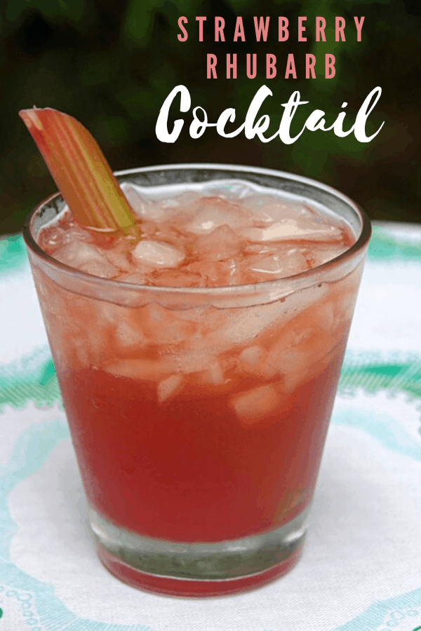 Strawberry Rhubarb Cocktail in a glass with a stalk of rhubarb in it