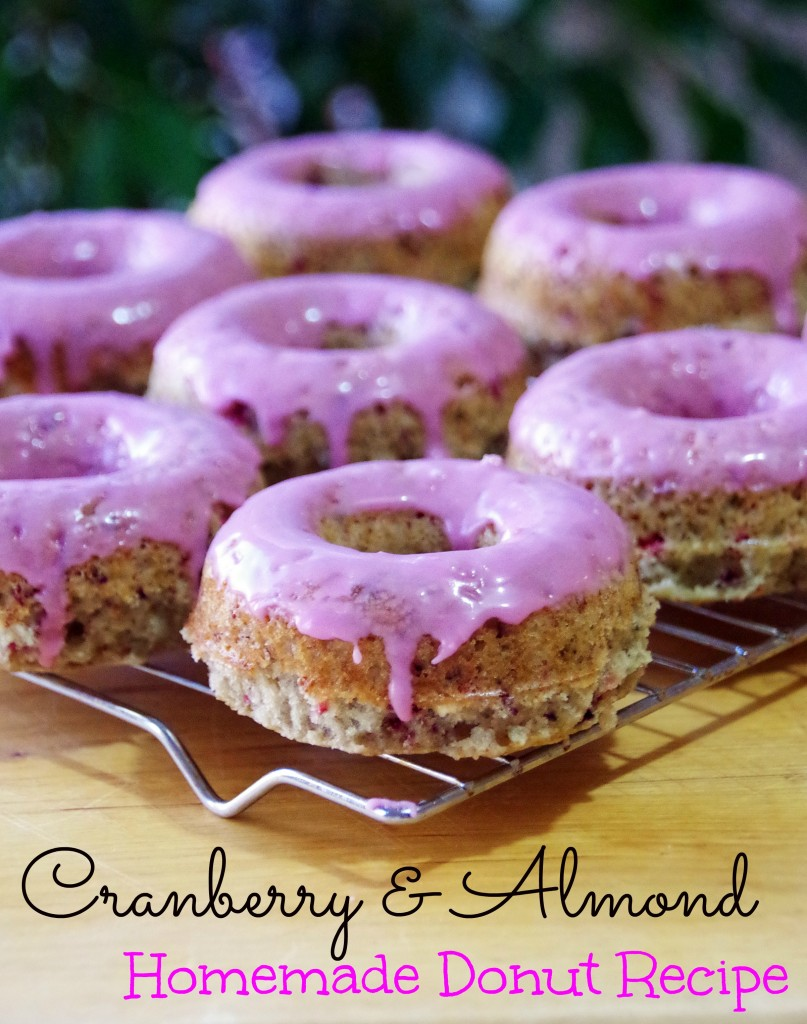 Crandberry Almond Donut Recipe 2