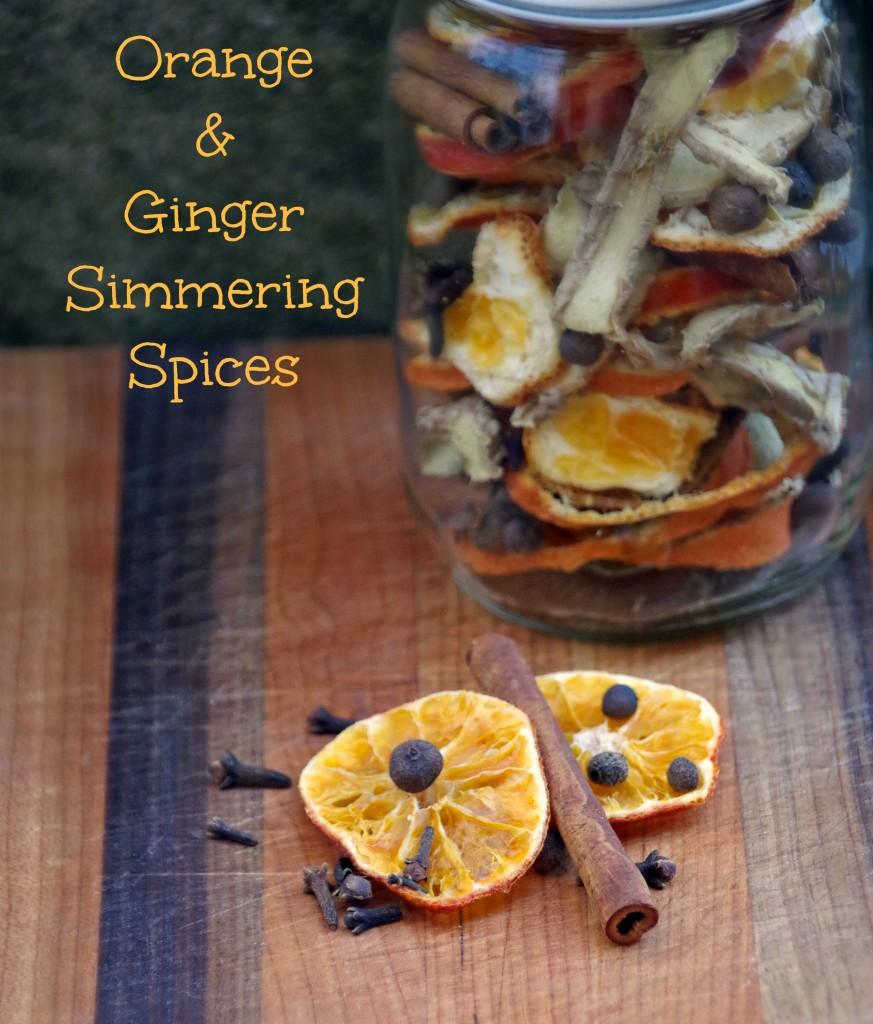 Orange Ginger Simmering Spices 6