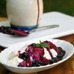 Bourbon Blueberry Sauce for Icecream 2