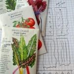 Easy Gardening Tips that won't break the bank