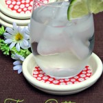 Terra Cotta Coasters Give Your Table a Fresh Look for Spring!