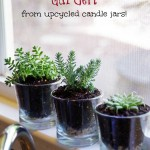 Upcycle Candle Jars into a DIY Succulent Garden