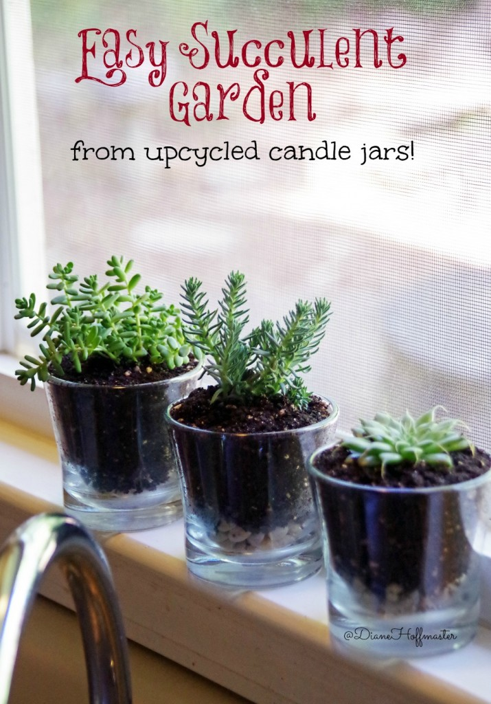 Upcycle Candle Jars into a cute DIY succulent garden. Easy gardening craft you can even do with the kids!