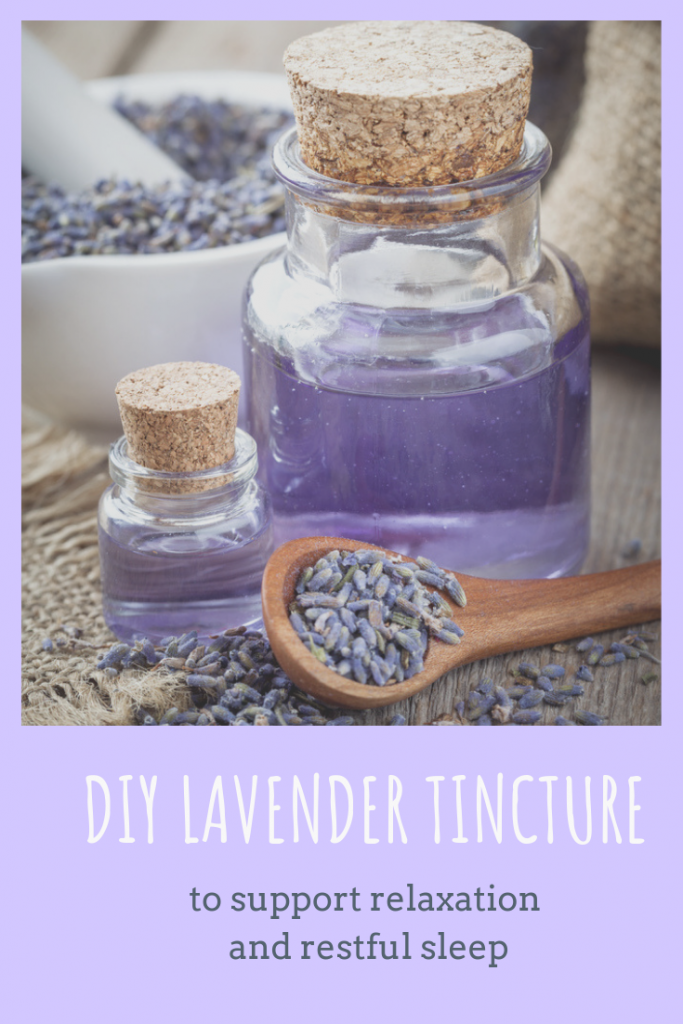 DIY Lavender Tincture to support relaxation and restful sleep