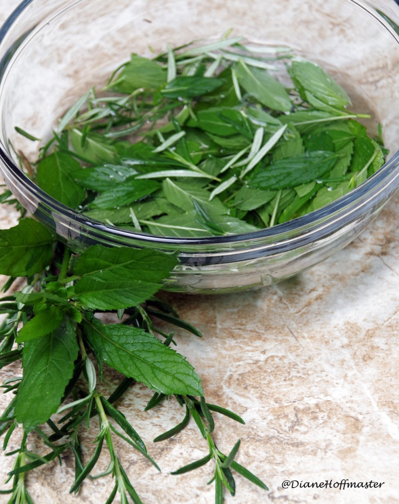 DIY Rosemary Mint Facial Toner for Better Summer Skin Care