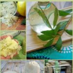 Creative uses for fresh herbs