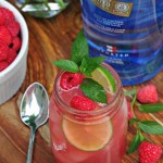 Raspberry Vodka Mojio with Pinnacle Vodka