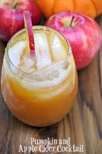Pumpkin and Apple Cider Cocktail Recipe 2