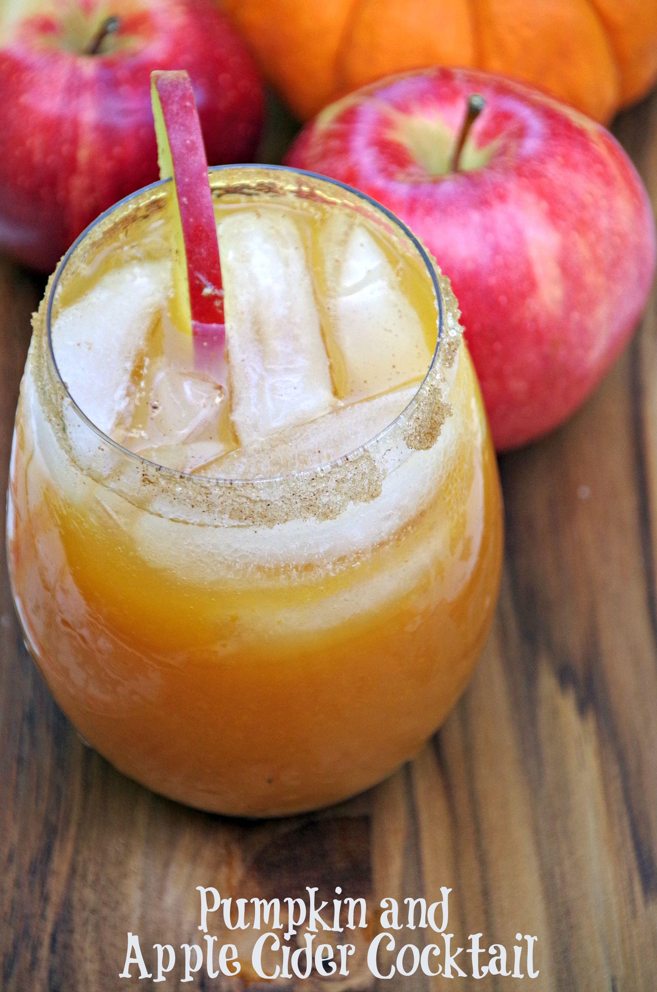 Pumpkin and Apple Cider Cocktail Recipe 2
