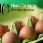 10 Uses for Eggs Besides Eating Them For Breakfast!