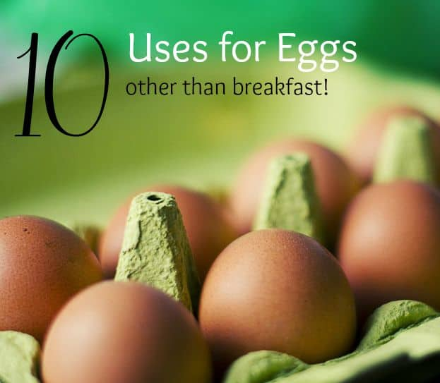 Uses for eggs besides eating them for breakfast