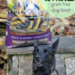 How to Tell Your Dog Loves Pinnacle Grain Free Dog Food #PinnacleHealthyPets