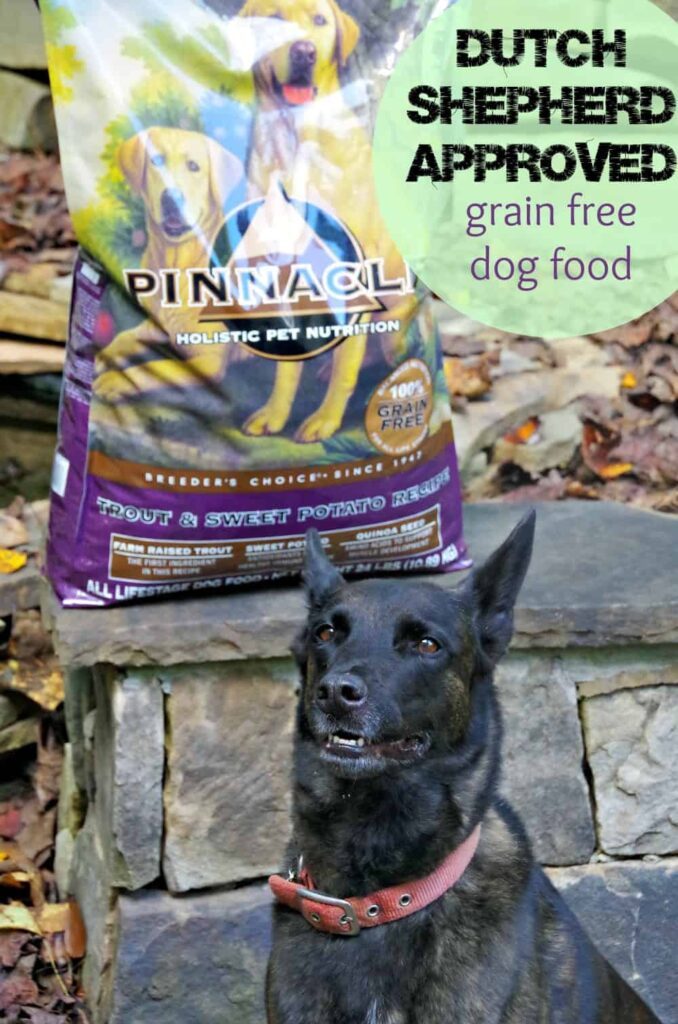 Pinnacle Grain free dog food for my Dutch Shepherd