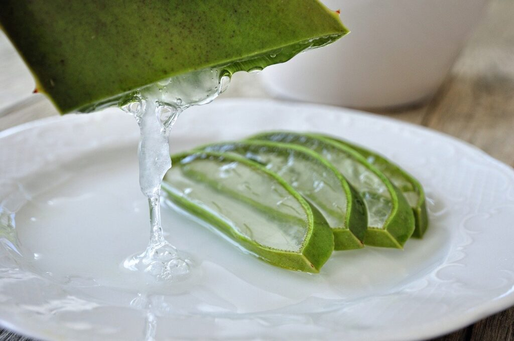 aloe plant sliced up with aloe gel on plate