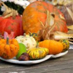 Five Tips for a Happy and Healthy Plant-Based Thanksgiving