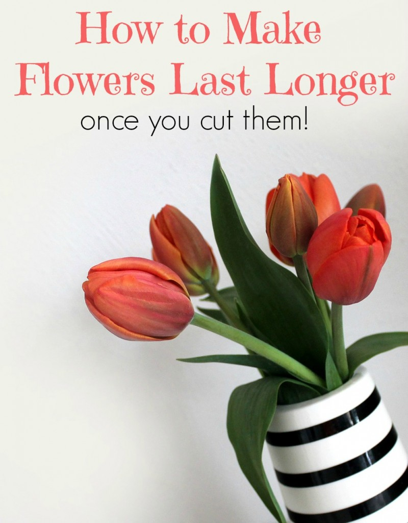 How to Make Flowers Last Longer Once You Cut Them