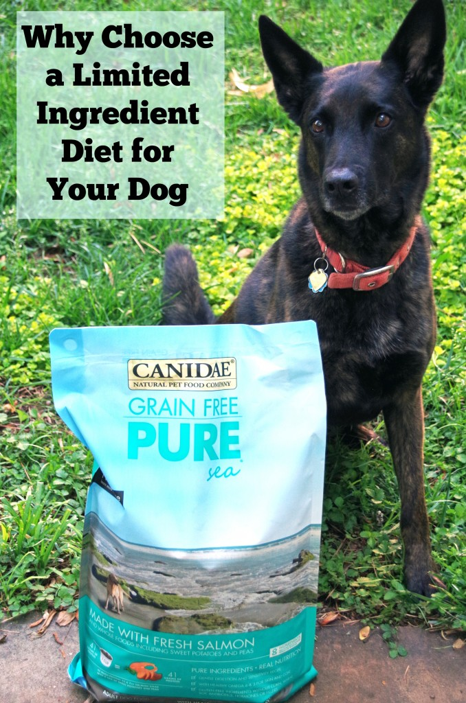 Choosing a Limited Ingredient Diet for Your Dog # HealthyPetHappyPet
