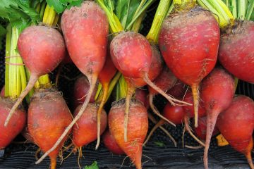 How to Roast Fresh Beets for Maximum Flavor