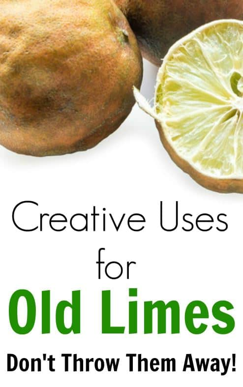 What to do with limes when they get too old