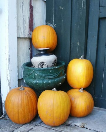 Fall Outdoor Decorating Ideas that won't break the bank.
