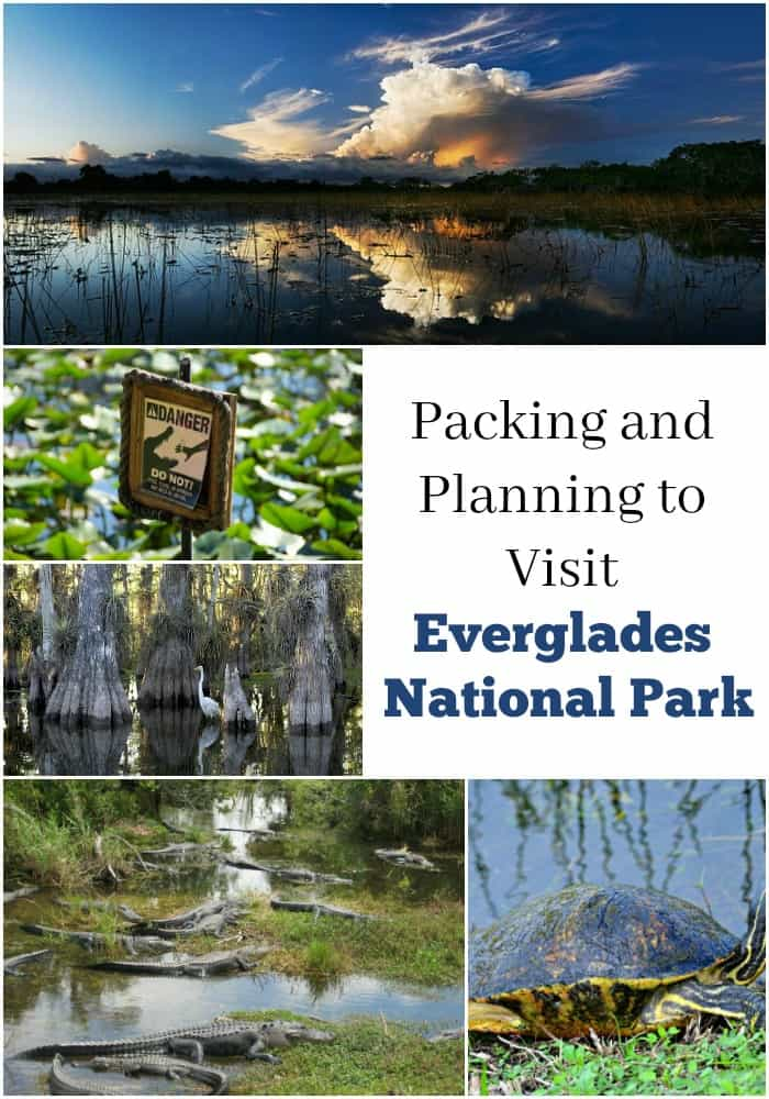 Packing and Planning to Visit Everglades National Park