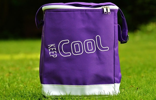 closed cooler bag on grass
