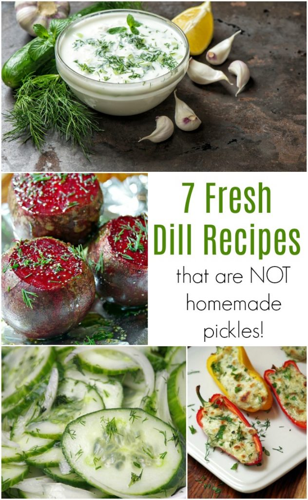 7 Fresh Dill Recipes that are NOT Homemade Pickles