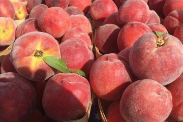 Easiest Way To Peel Peaches and 5 Delicious Peach Recipes
