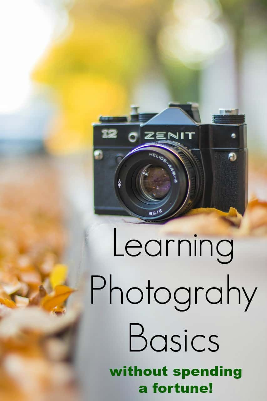 Want to start learning photography basics but are short on cash?  Learn how to become an expert at taking photos without spending a fortune!