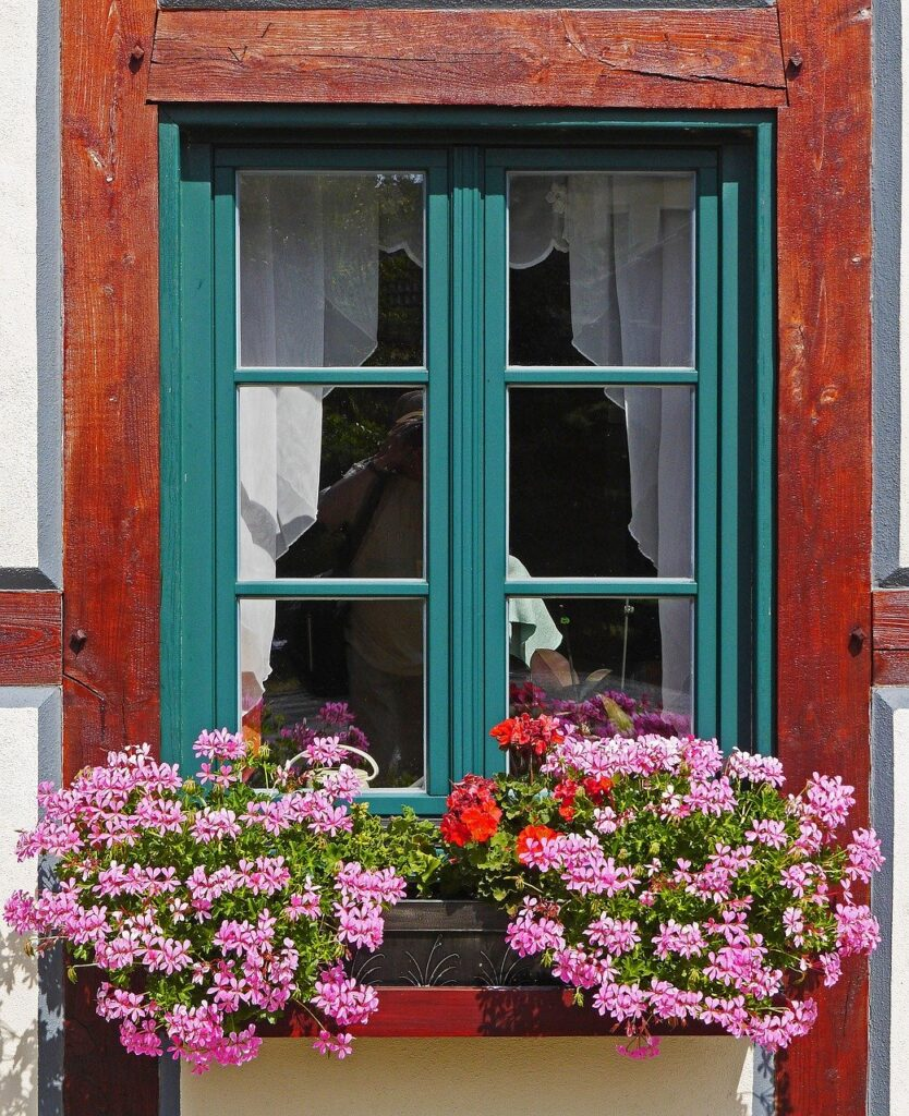 flowers in window boxes on house exterior